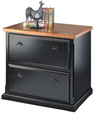 Picture of Hardwood Two Drawer Lateral File Storage