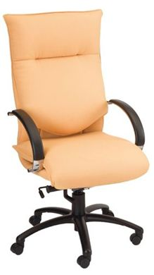 Picture of High Back Office Task Conference Chair with Chrome Loop Arms