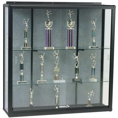"Picture of 4'H x 6'W x 14""D Wall Mounted Display Case"
